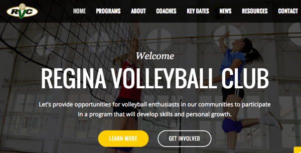 RVC's brand new website